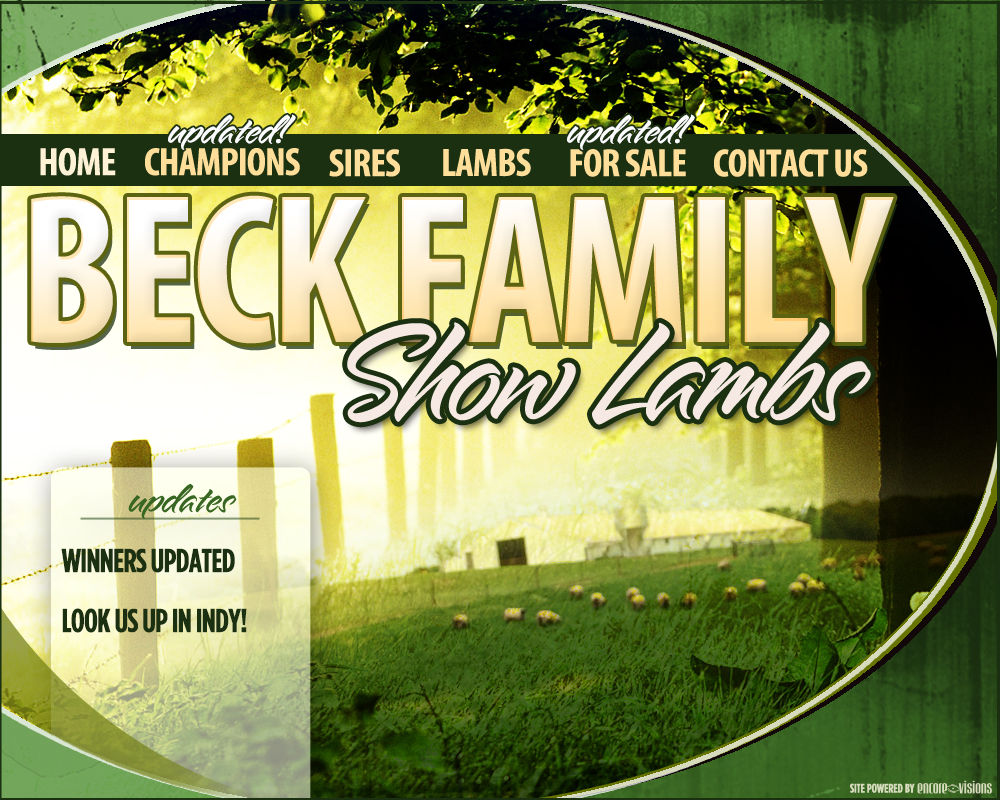 Beck Family Show Lambs